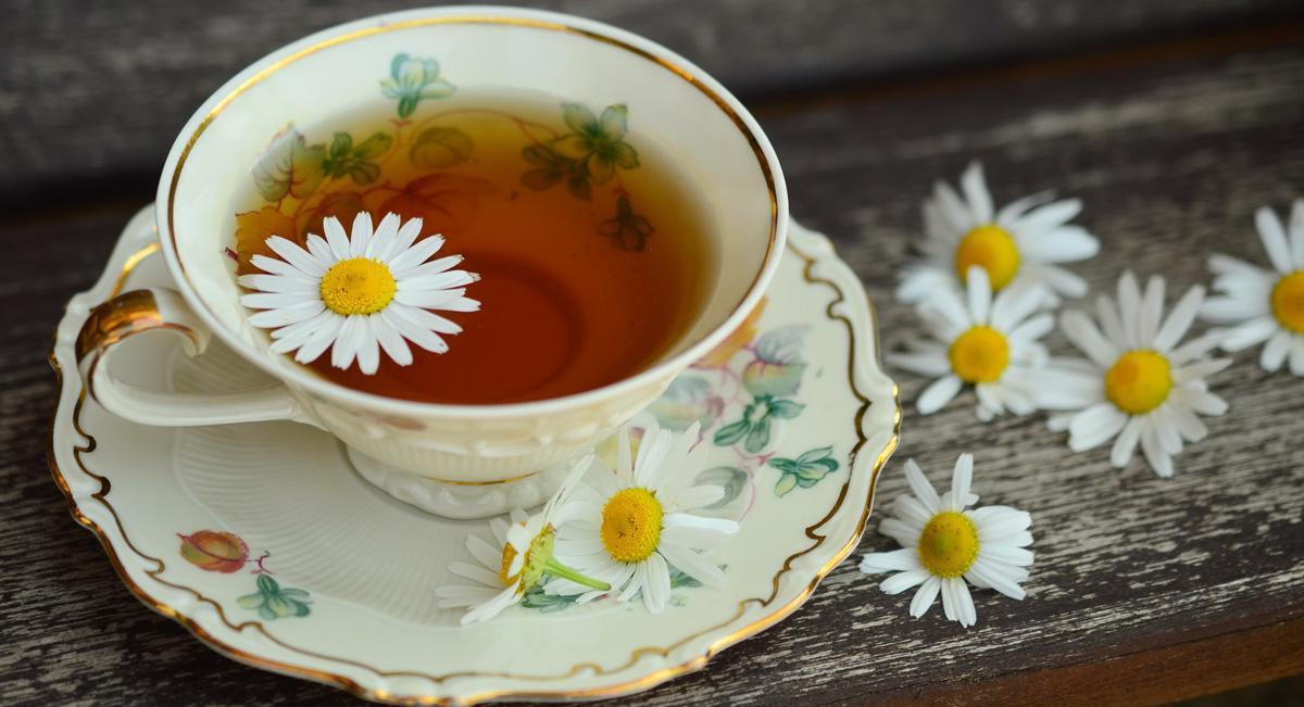 как правильно заваривать ромашковый чай